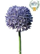 Allium artificiel en tige H 45 cm Lavande - BEST