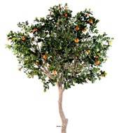 Oranger artificiel tronc naturel en pot avec fruits H 280 cm Orange