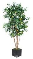 Citronnier artificiel tronc naturel en pot avec fruits H 150 cm Jaune citron