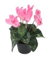 Cyclamen artificiel en pot H 20 cm D 15 cm qualité top Rose soutenu