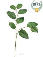 Branche de Gaultheria Shallon artificielle, H 77 cm - BEST